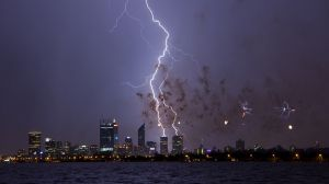 perth-2012-sky-show-lightning-bluebirds-1200